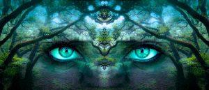 Fantasy-Foto: ein mystisches übergroßes Augenpaar schaut durch den Wald