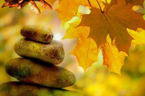 ONLINE: Meditationspraxis @ Online via Zoom